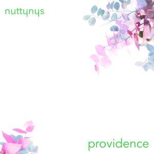 Nutty Nys – Providence