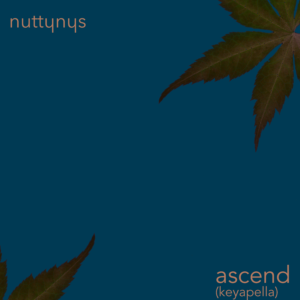 Nutty Nys – Ascend (keyapella)