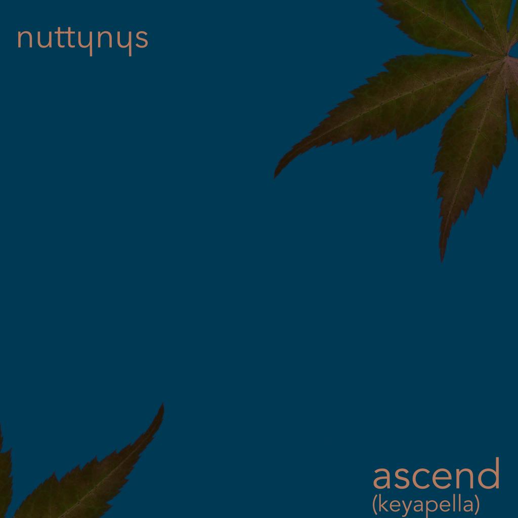 Nutty Nys - Ascend keyapella