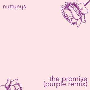 Nutty Nys - The Promise (Purple Remix)