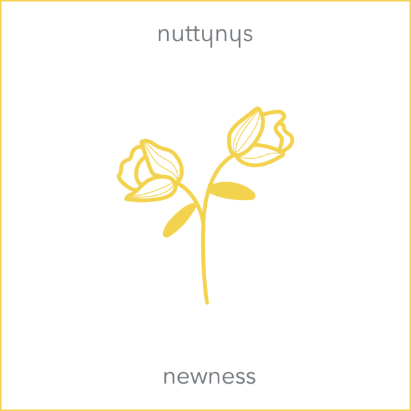 Nutty Nys - Newness