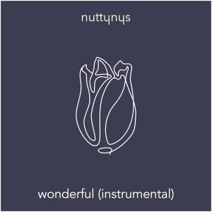 Nutty Nys – Wonderful (Instrumental)
