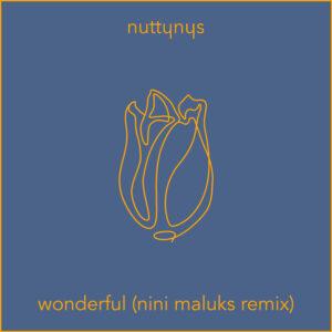 Nutty Nys – Wonderful (Nini Maluks Remix)