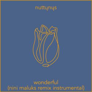 Nutty Nys – Wonderful (Nini Maluks Remix Instrumental)