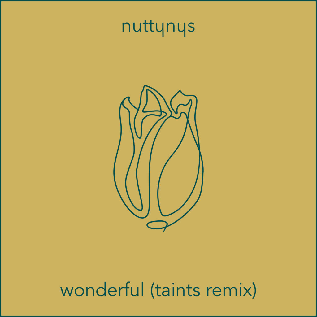 Nutty Nys Wonderful Taints Remix