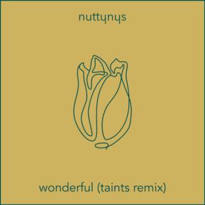 Nutty Nys – Wonderful (Taints Remix)