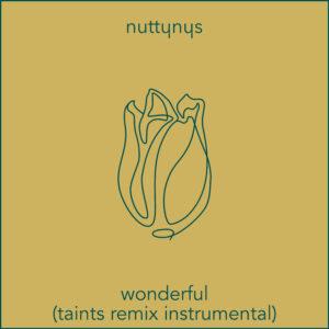 Nutty Nys – Wonderful (Taints Remix Instrumental)
